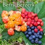 berryberzerk2-700x700