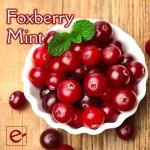 foxberrymint2-700x700